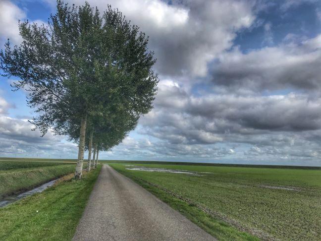 coenraad polder groningen